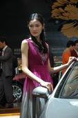 2009上海车展奔驰车模