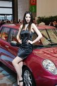 2009上海车展力帆车模