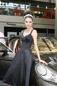 2009上海车展保时捷车模