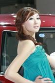 2009上海车展开瑞车模