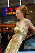 2009上海车展中华车模