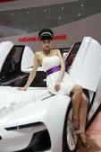 2009上海车展雪铁龙车模