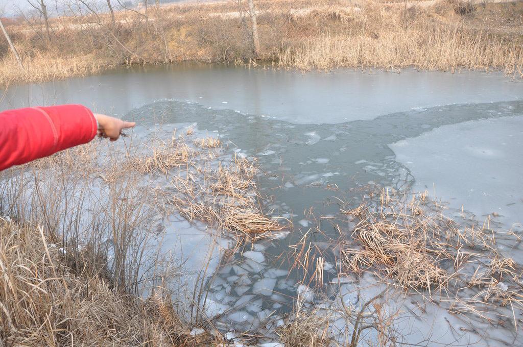 ...学4名小学生在上学路上溺水身亡.据光山县委有关负责人介绍...