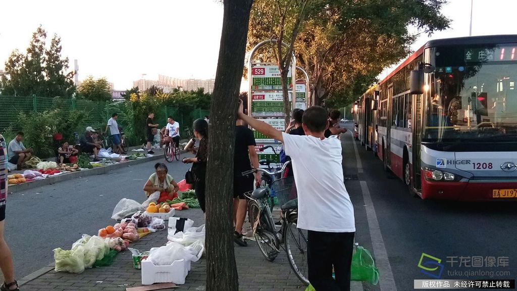 北京新发地桥北公交站旁菜摊泛滥