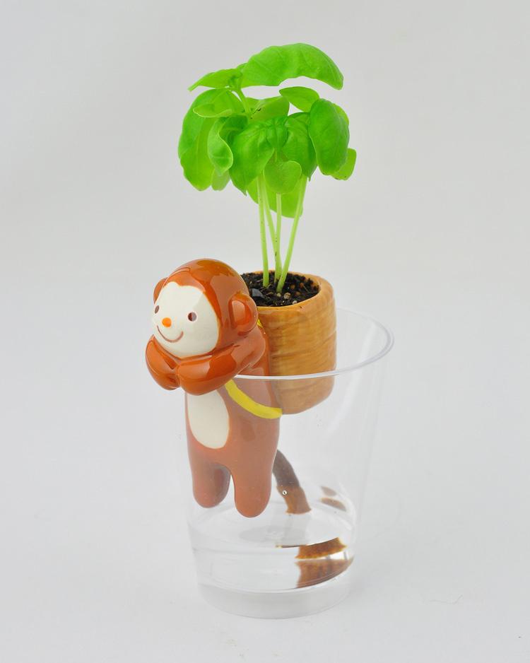 超萌迷你植物 动物尾巴吸水盆栽图片
