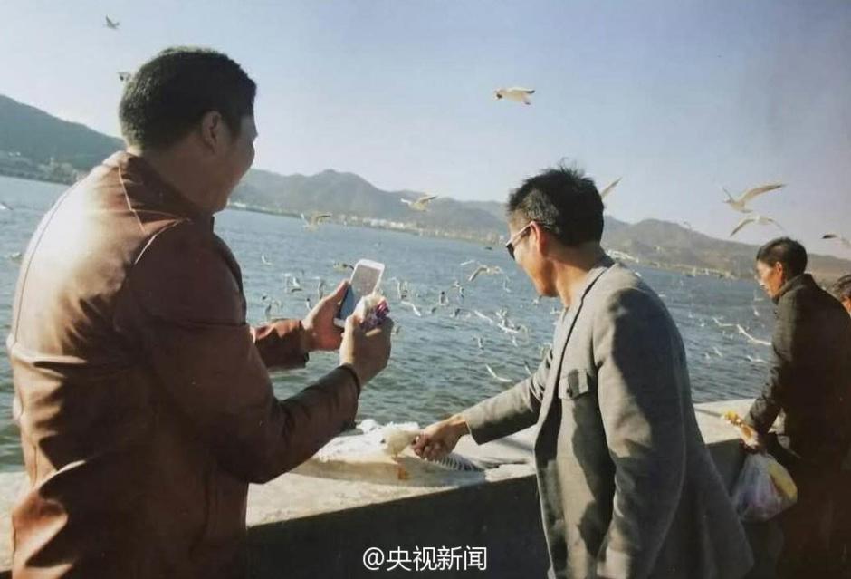 云南 翅膀 游客/游客抓海鸥拍照被制止后摔断海鸥翅膀 (1/6)