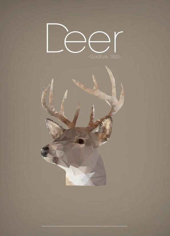 多边形动物海报设计欣赏