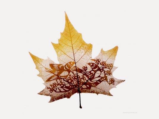 精美叶雕艺术作品 树叶上的唯美剪影