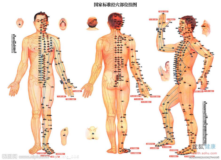 人体经络穴位图