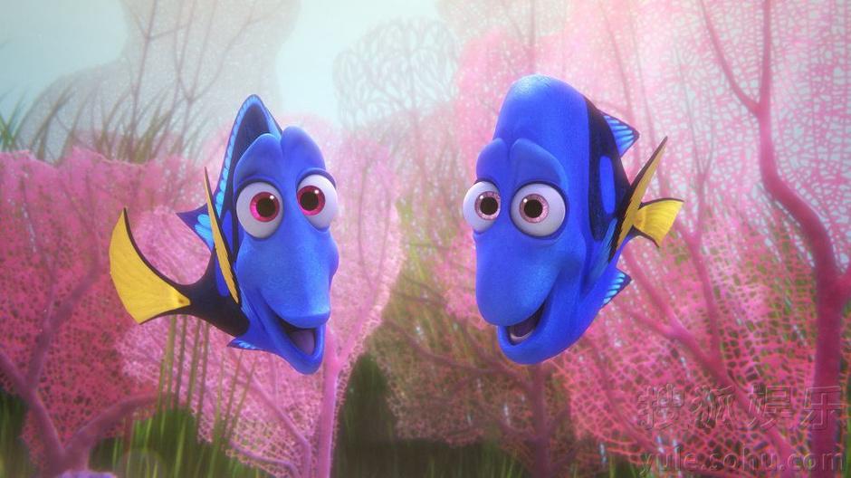 《海底总动员2》欢乐公映 经典回归海底大冒险