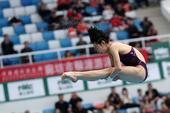 在北京水立方进行的2017年国际泳联跳水世界系列赛北京站结束第二日争夺,中国选手施廷懋以391.05...