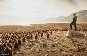 2017年4月18日讯,南乔治亚岛圣安德鲁斯湾,摄影师David Merron搭乘探险船在南极和亚南...