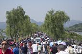 5月29日,端午假期第二日,杭州天气晴好,西湖断桥景区迎来客流高峰。虽然初夏阳光暴晒,但高温挡不住游...