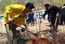 陈楚生义务参与公益植树 身体力行为环保发声