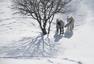 《坝上十日》-  2015年李刚《雪原马》系列作品