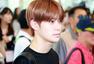 少时SHINee NCT共赴济州岛 出席SM研讨会