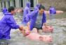 当洪水来袭 动物遭遇了什么?