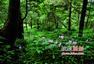 台湾摄影教育交流展