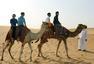国乒沙漠中拍广告:丁宁擎鹰 张继科驯骆驼(图)