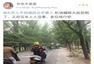 北京狂风吹倒大树 汽车被砸道路严重拥堵