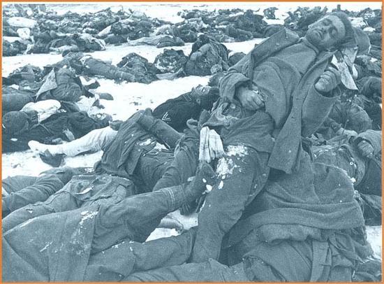 产战争_惨烈的苏德战争【组图】